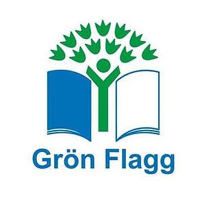 gronflagg.jpg