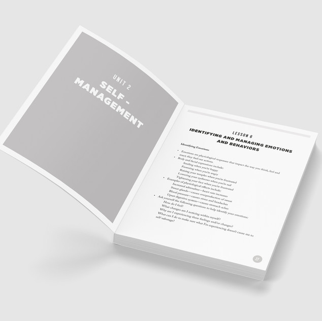 Curriculum Mockup 4.jpg