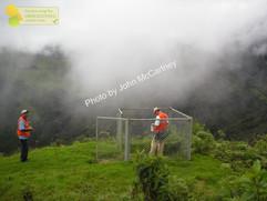 Pluviometer download.JPG.jpg
