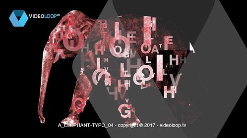 VideoLoop.tv | Elephant with dancing letters into his body