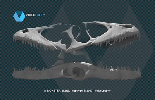 videoloop.tv | 3D monster skull turning