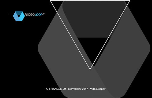 VideoLoop.tv | An wired isometric triangle grows in front