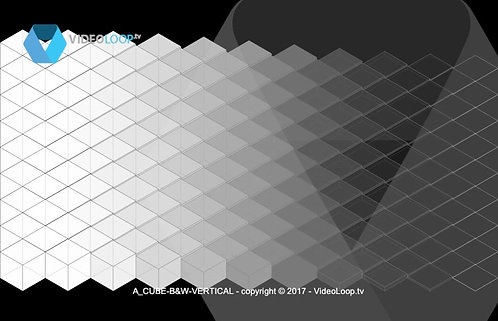 VideoLoop.tv | A isometric black and white cubes wave animation