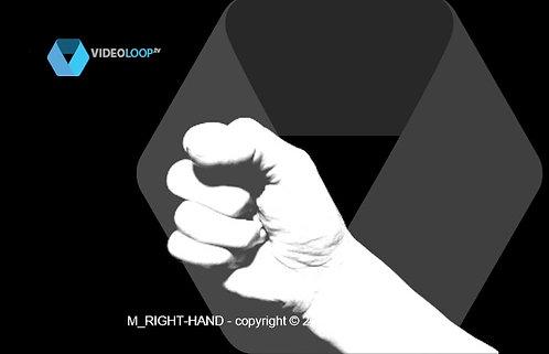 VideoLoop.tv | Hand counting