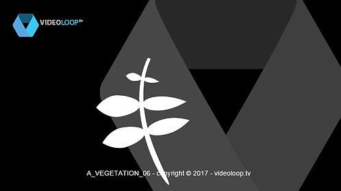 VideoLoop.tv | Vectorized leaves grow