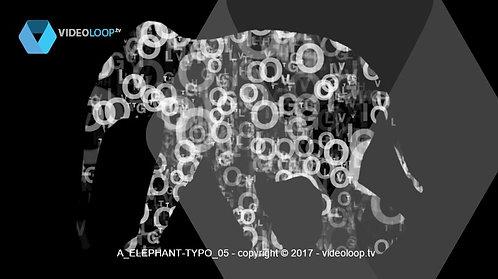 VideoLoop.tv | Typography dancing into a elephant
