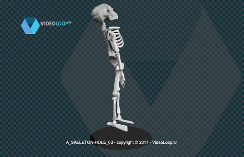 videoloop.tv | A skeleton comes out of a hole