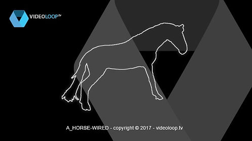 VideoLoop.tv | A balancing wired horse