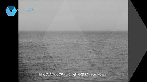 VideoLoop.tv | Black and white ocean loop animation
