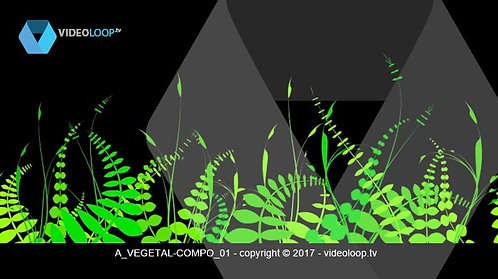 VideoLoop.tv | Growing plants - Tileable on its horizontal axis