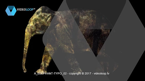 VideoLoop.tv | A typography incrusted into a elephant