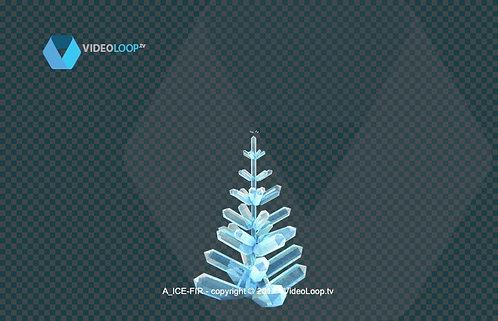 videoloop.tv | Growing ice crystals christmas tree