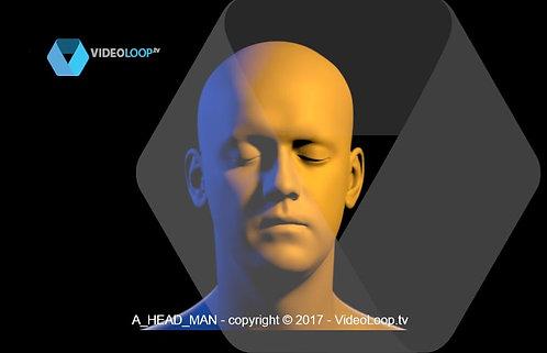 VideoLoop.tv | A 3D head rotates 360 °