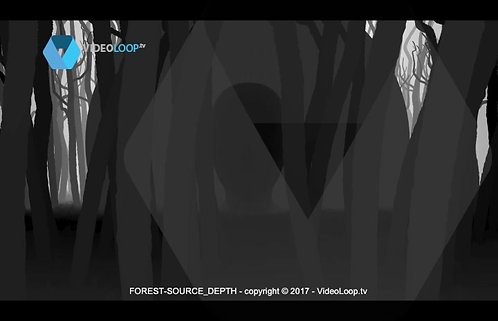 Videoloop.tv | Nature |  Forest