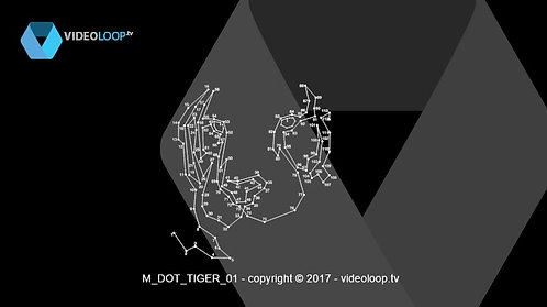 VideoLoop.tv | A dot to dot animated line draw a tiger face