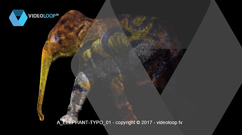 VideoLoop.tv   Elephant with dancing letters into his body