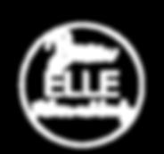 white_logo_transparent_backgroundv2.png