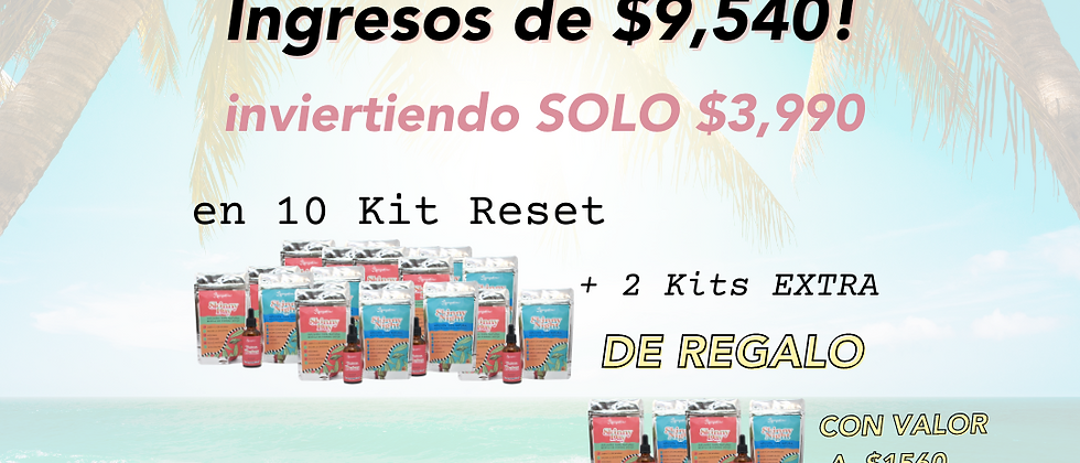 Paquete Distribuidor 12 Kit Reset