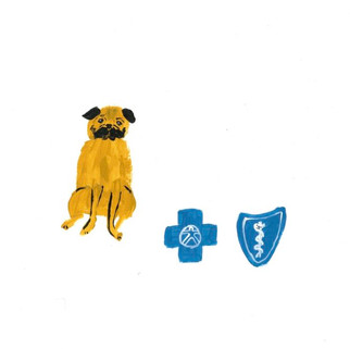 """""""A Small Dog and Health Insurance"""""""