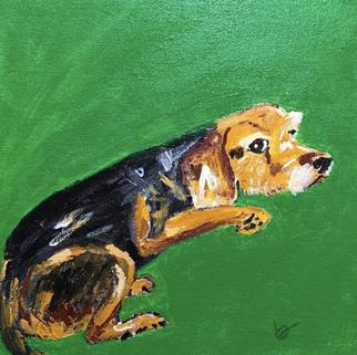 """Cooper"" portrait"