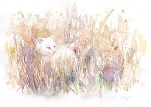 草むらに猫.jpg