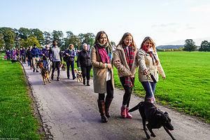 Big Dog Walk 14.jpg