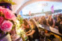 vet festival 5.jpg