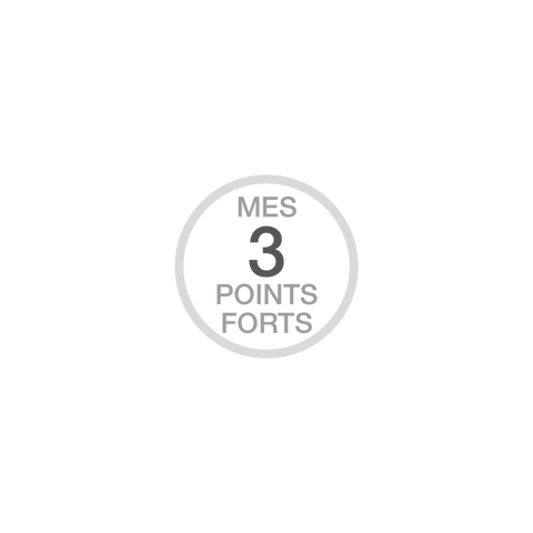3 points forts-04.png