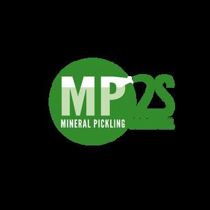 IDENTITÉ DE MARQUE : MP2S, filiale d'Iserco (leader européen de produits pour la manutention du vrac). MP2S est spécialisé dans le nettoyage écologique des pièces industrielles en INOX, par projection de minéraux à haute pression
