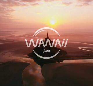 Logo construit à partir d'éléments obliques identiques pour une harmonie globale et de finesse.