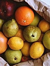 fruit in bag.jpg