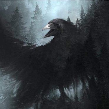 Raven is magical and protective, connect