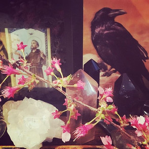 Spring Altar ✨🌿🌷🧚🏼♀️_#ravenspirit #