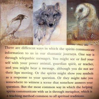 In reiki and shamanic journeys spirit of