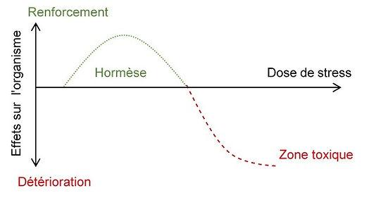 loi de l'hormèse