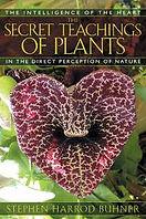 secret teachingss of plants.jpg