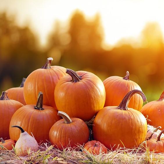 Pumpkin Patch Social