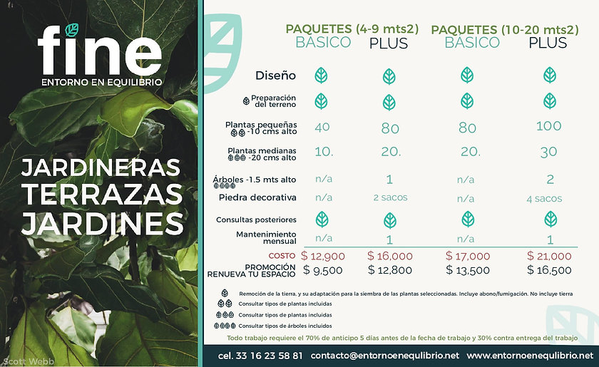 Flyer fine Paquetes-1.jpg