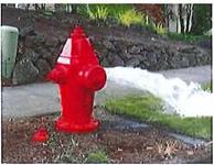 Hydrant Flushing and Maintenance Program