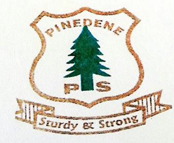 Pinedene Primary School - Ravensmead