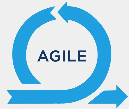 Agile but Customer Dependent