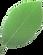img_leaf.png