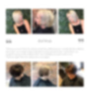 hair loss 4.jpg