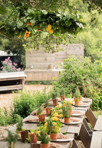 behind the scenes | garden party