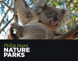 PINP Web Tile Koalas.jpg
