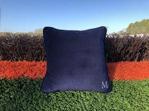 Velvet cushion