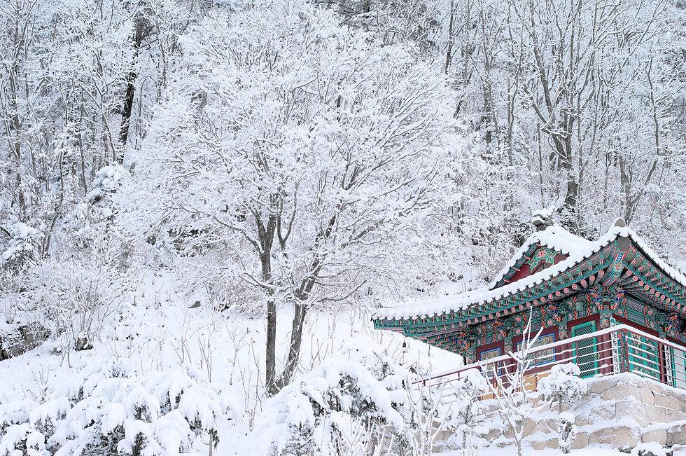 snow-4067553_1920.jpg