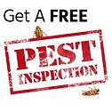 pest-inspection.jpg