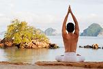 naturopathie approche holistique de la santé ,le corps et l'esprit