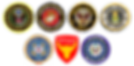 PATCH_ALL_SERVICES_SCOUTS_GOVERNEMENT SE